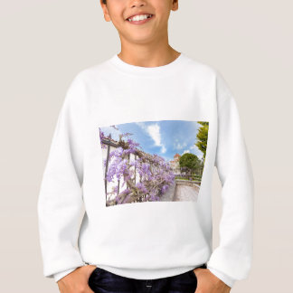 Blooming blue Wisteria sinensis on fence in Greece Sweatshirt