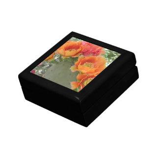 Blooming Cactus Gift Box