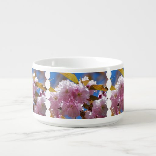 Blooming Cherry Blossoms Chili Bowl
