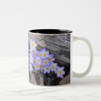 Blooming Crocus Mug
