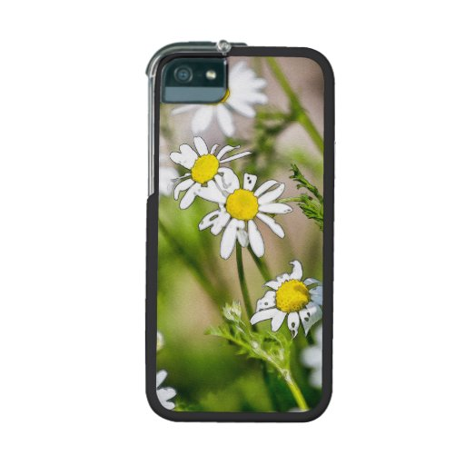 Blooming Daisies Floral Painterly Photograph Cover For iPhone 5/5S