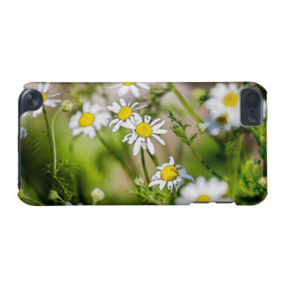 Blooming Daisies Floral Painterly Photograph iPod Touch (5th Generation) Cover