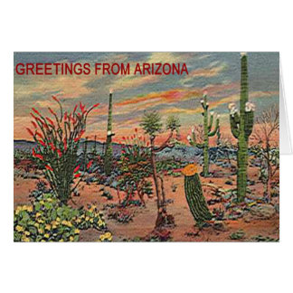 BLOOMING DESERT NOTE CARDS