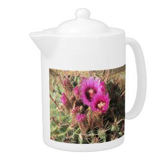 Blooming Devil s Tongue Barrel Cactus