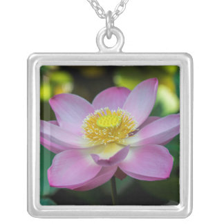 Blooming lotus flower, Indonesia Silver Plated Necklace