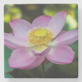 Blooming lotus flower, Indonesia Stone Coaster