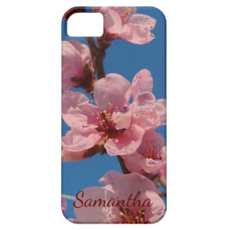 Blooming peach tree pink blooms in springtime iPhone 5 covers