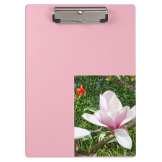 Blooming Pink Magnolia 01.7 Clipboard