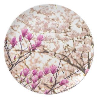 Blooming Pink Purple Magnolias Spring Flower Plate