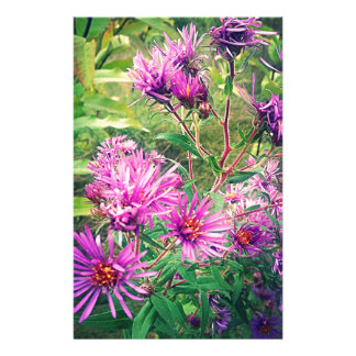Blooming Purple Asters Customized Stationery