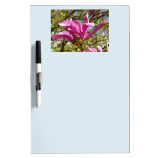 Blooming Purple Magnolia 01.2 Dry Erase Board