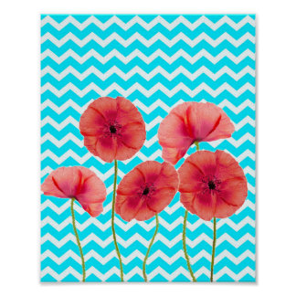 Blooming red poppies blue chevron pattern posters