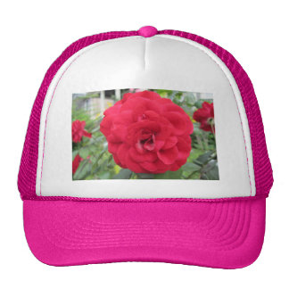 Blooming Red Rose Flower Trucker Hat