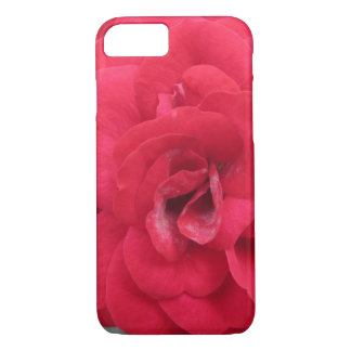 Blooming Red Rose Flower iPhone 7 Case