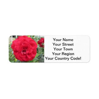 Blooming Red Rose Flower Return Address Label