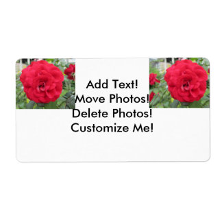 Blooming Red Rose Flower Shipping Label