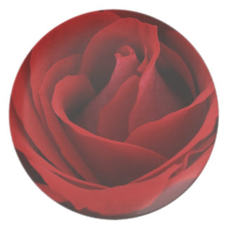 Blooming Red Rose Party Plates