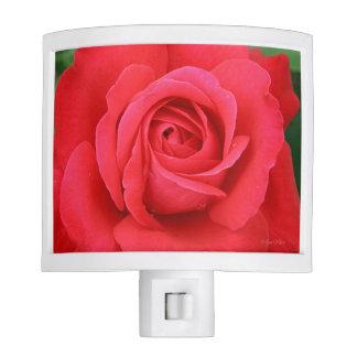 Blooming Romantic Red Rose Nightlight Night Lites