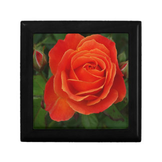 Blooming Rose Orange Red Small Square Gift Box