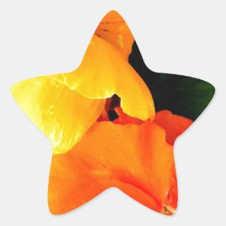 Blooming Star Sticker