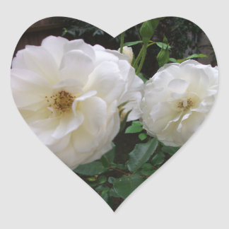 Blooming White Roses Heart Stickers