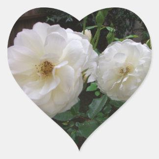 Blooming White Roses Heart Sticker