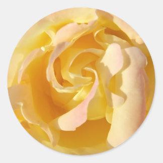Blooming Yellow Rose Flower Sticker