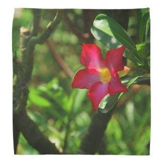 Blooms and Flowers Bandana