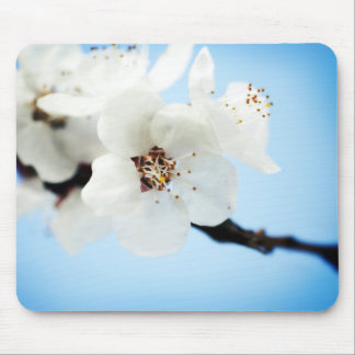 Blossom Clouds Mousepad