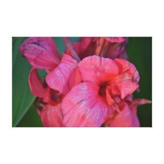 Blossom Free Gallery Wrapped Canvas