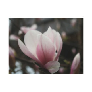 Blossom Gallery Wrap Canvas