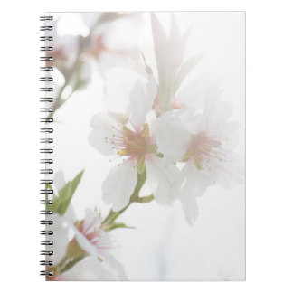 Blossom of the almond tree notebook