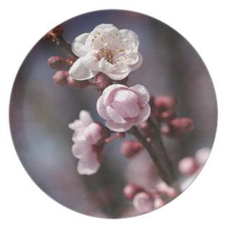 Blossom Spring Melamine Plate