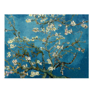 Blossoming Almond Tree by Vincent van Gogh Post Cards