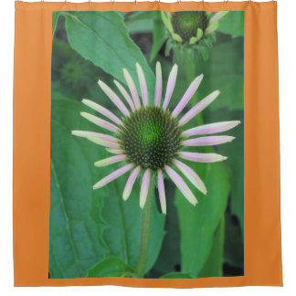 Blossoming Baby Daisy Flower Shower Curtain