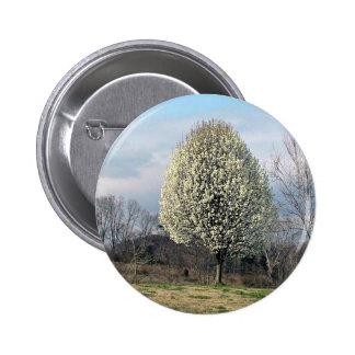 Blossoming Bradford Pear Tree Pins