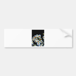 Blossoming darkness bumper stickers