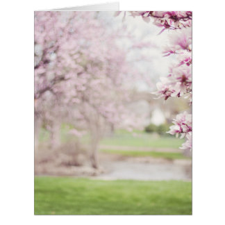 Blossoming Magnolia Trees Card