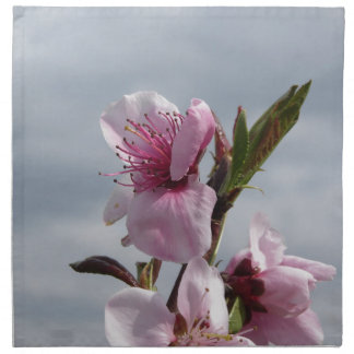 Blossoming peach tree against the cloudy sky napkin