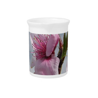 Blossoming peach tree against the cloudy sky pitcher