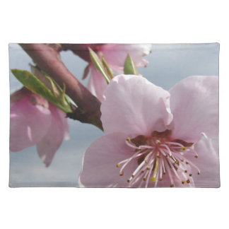 Blossoming peach tree against the cloudy sky placemat