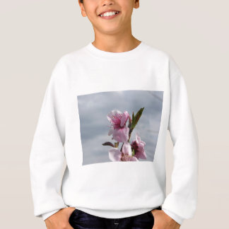 Blossoming peach tree against the cloudy sky sweatshirt