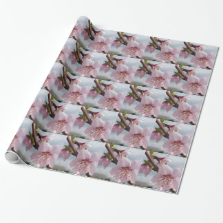 Blossoming peach tree against the cloudy sky wrapping paper