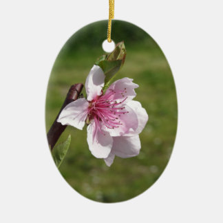 Blossoming peach tree against the green garden ceramic oval decoration