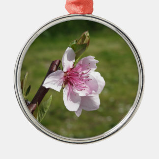 Blossoming peach tree against the green garden metal ornament