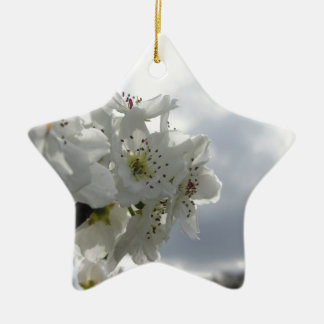 Blossoming pear tree against the cloudy sky ceramic star decoration