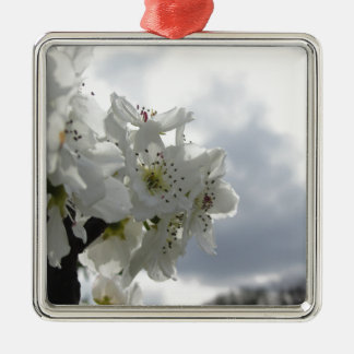 Blossoming pear tree against the cloudy sky Silver-Colored square decoration