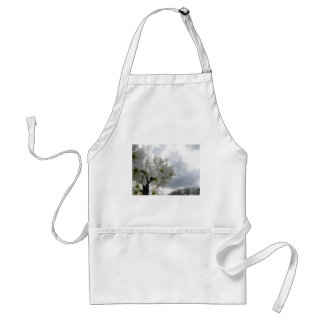 Blossoming pear tree against the cloudy sky standard apron