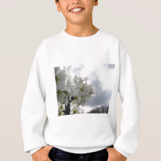 Blossoming pear tree against the cloudy sky sweatshirt