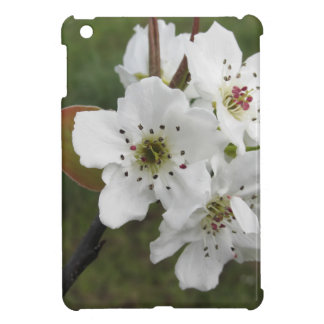 Blossoming pear tree against the green garden iPad mini case